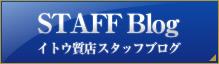 質入の新着商品ブログ記事